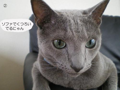 ② のコピー.jpg